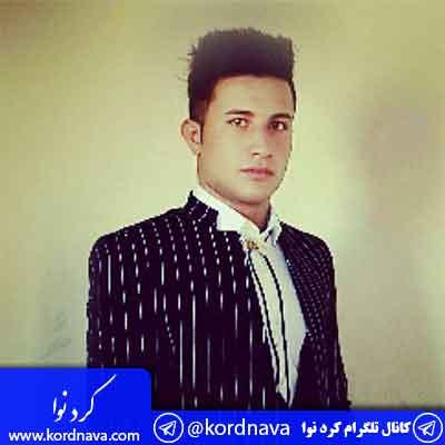 آهنگ پری از علی احمدیانی
